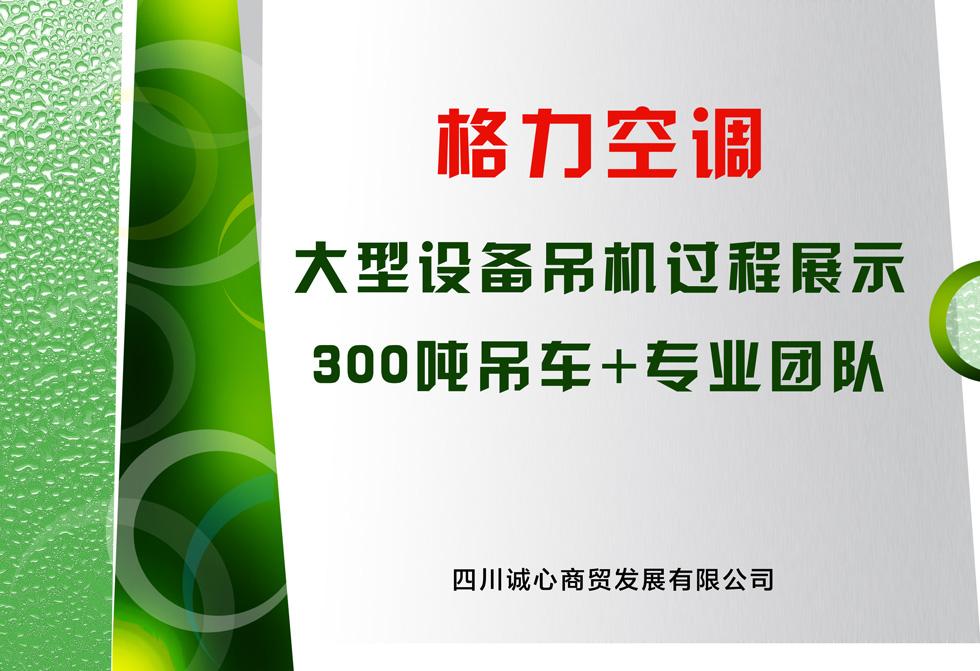 必威最新地址大型设备吊机过程展示